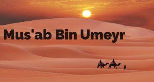 Musab bin Umeyr kısaca hayatı