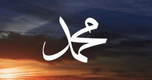 Peygamberimizin özellikleri, örnek davranışları